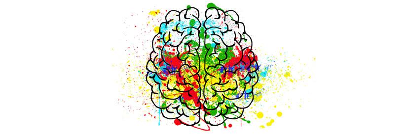 Jakie cechy posiadają osoby o wysokiej inteligencji emocjonalnej?